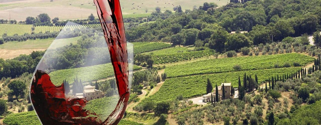 tematicos wine food za grupo viagens eventos top page